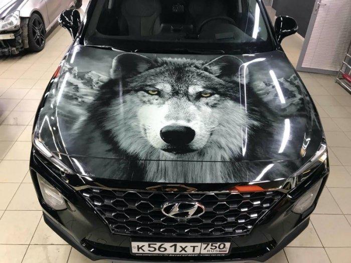 картинки волк на капот авто цитаты